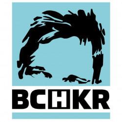 Bochkor logo