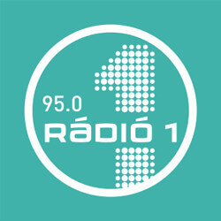 Debrecen Rádió FM95 logo